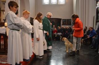 Hondenwijding2018 (5)